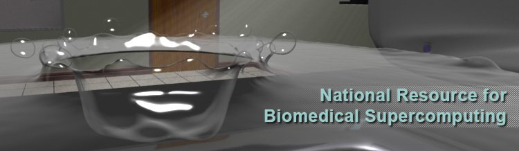 National Resource for Biomedical Supercomputing Home.